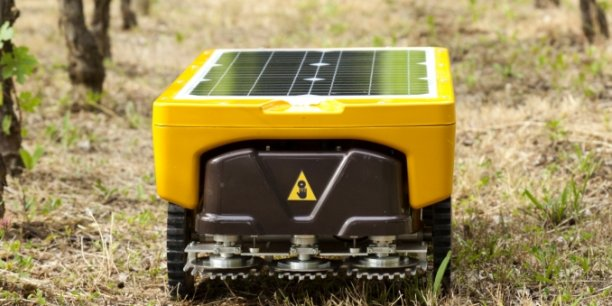 Désormais totalement autonome et au point, Vitirover, le robot né à Saint-Emilion, peut commencer à débouler, au pas, dans les vignobles du monde entier