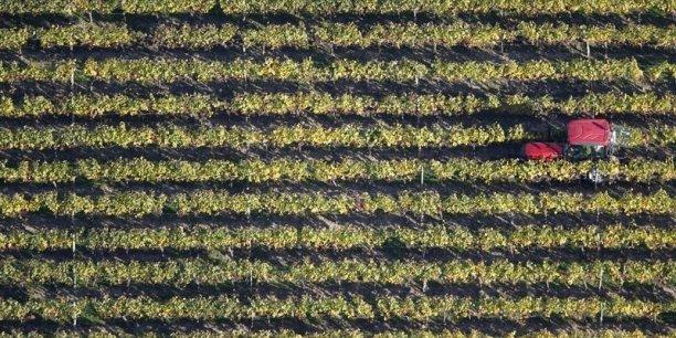 Deux tiers des exportations bio sont du vin.