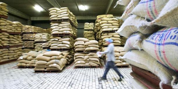 La baisse de 2015 a été plus modérée pour les céréales (-6% pour le blé, -9% pour le maïs).