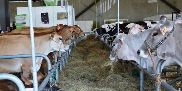 La Région se mobiliser pour favoriser une agriculture d'innovation et d'anticipation.