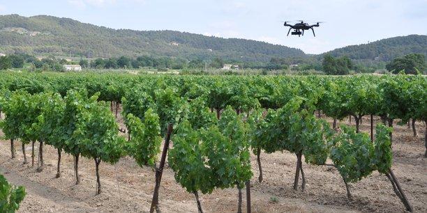 Le capteur développé par Carbon Bee permet de détecter les maladies atteignant les vignes grâce à sa vision en infrarouge.