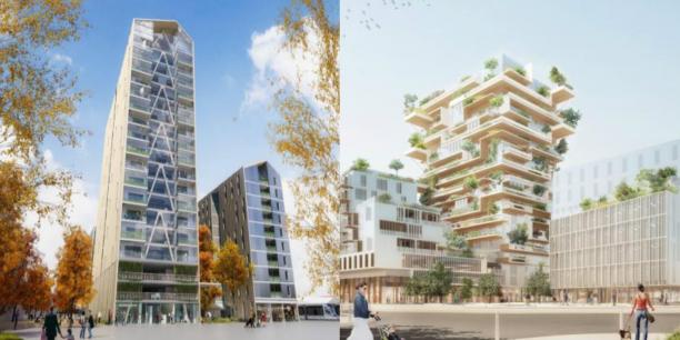 Les futures tours en bois Silva et Hyperion doivent être construites