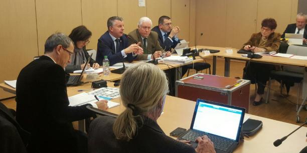 Martial Saddier, au micro, lors de la présentation en commission du SRDEII.