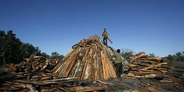 Des ouvriers entassent du bois sur un lieu de production de charbon, à Cuba.