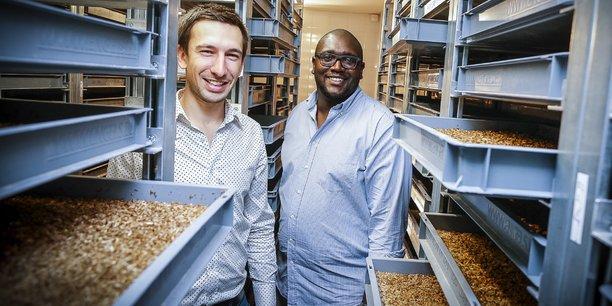 Clément Soulier et Grégory Louis, cofondateurs d'Entomo Farm