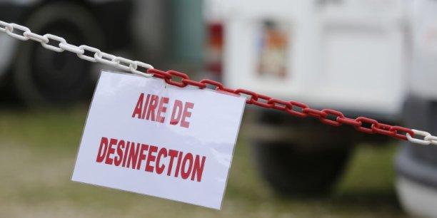 Une période de vide sanitaire est prévue du 17 avril au 28 mai dans les départements du Gers, de la Haute-Garonne, des Landes, des Pyrénées-Atlantiques et des Hautes-Pyrénées.