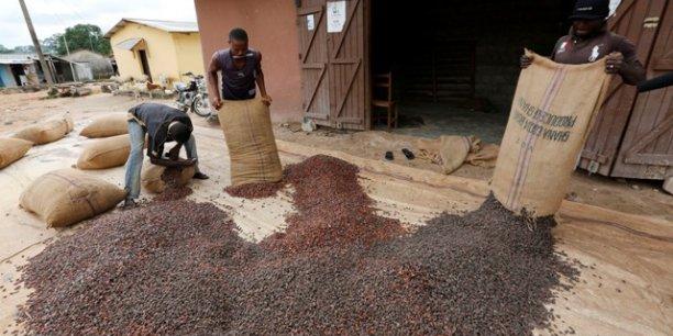 Avec un volume de 882 175 tonnes attendues cette année, la filière du cacao représentera quelque 30% des recettes d'exportations et 7% du PIB du Ghana