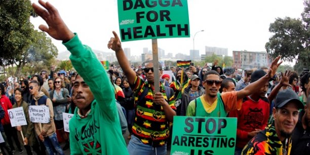Des manifestations brandissant des pancartes appelant à la légalisation du dagga, le 6 mai 2017 dans la ville du Cap, en Afrique du Sud.