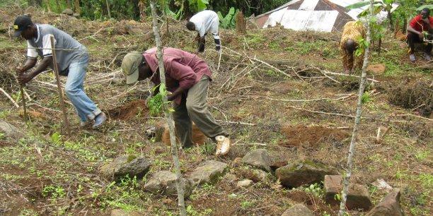 Les remboursement effectués dans le cadre des C2D sont reversés sous forme de dons affectés à des programmes de lutte contre la pauvreté et pour le développement durable.