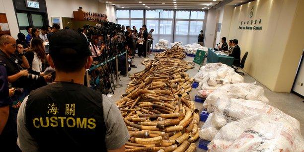 Les autorités douanières de Hong Kong ont annoncé cette saisie, lors d'une conférence de presse, hier jeudi 6 juillet 2017.