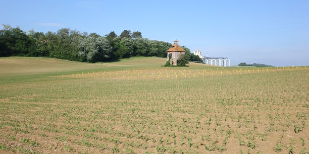 La fédération régionale des agriculteurs biologiques craint la disparition de l'aide au maintien et le possible non-financement des conversions en 2019 et 2020.
