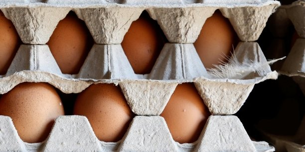 Les Pays-Bas savaient depuis novembre 2016 et n'ont pas transmis l'information, alors qu'ils sont un des plus gros exportateurs d'œufs au monde, accuse le ministre de la Santé belge, Denis Ducarme ce mercredi devant les députés à Bruxelles.