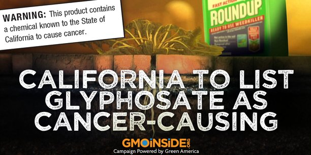 impacts du glyphosate sur la santé et l environnement ce que dit la