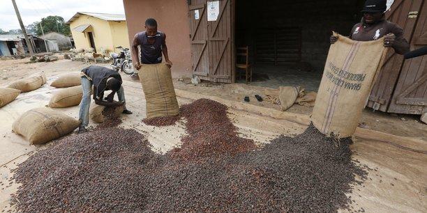 En Côte d'Ivoire, la filière du cacao participe à hauteur de plus de 20% du PIB et représente près de 50% des recettes à l'exportation.