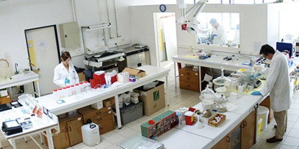 Le laboratoire de Polyrise