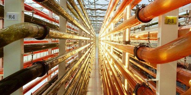 Les photobioréacteurs utilisés par Microphyt pour la production de microalgues
