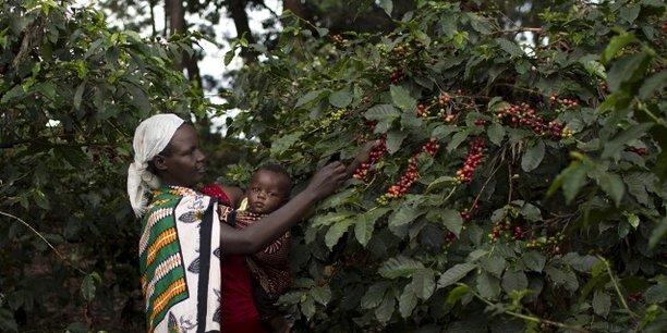 Selon l'étude d'Oxfam sur les politiques agricoles en Ethiopie, au Ghana, au Nigeria, aux Philippines et en Tanzanie, les femmes sont sous-financées.