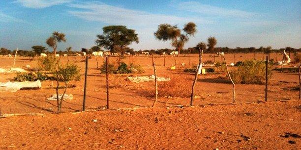 Mauritanien datant