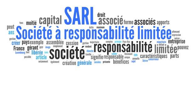 Avantages Et Inconvenients De La Sarl
