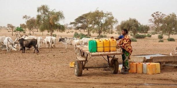Dans sa seconde phase, le Programme d'urgence de développement communautaire (PDUC) au Sénégal prévoit notamment le lancement de 1 000 périmètres agricoles qui devraient employer chacun entre 10 et 15 personnes.