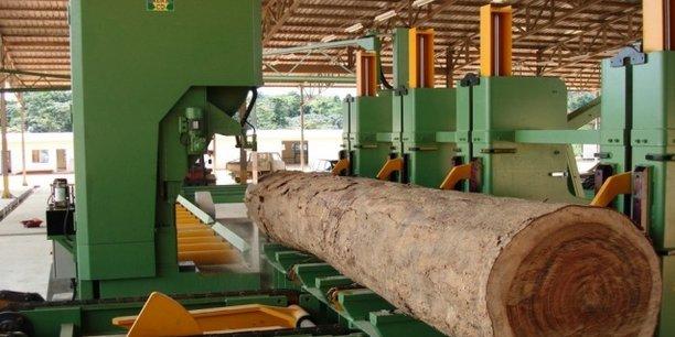 Avec l'installation du nouveau guichet unique au Gabon, le délai de création d'une entreprise devrait passer de 20 jours à 24 heures, réduisant ainsi les coûts et facilitant les procédures pour les investisseurs.