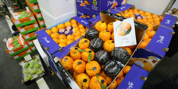 Au MIN de Toulouse, l'origine, la traçabilité et la sécurité alimentaire des fruits et légumes sont garanties.