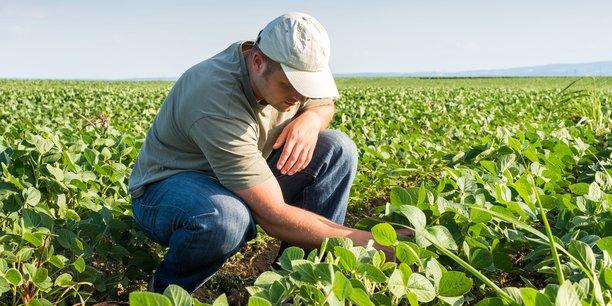 L'exploitant agricole est d'abord et avant tout un chef d'entreprise, il se forme donc tout au long de sa carrière.
