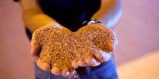 Le directeur de l'usine examine une pile de potasse traitée à l'installation de stockage de la mine Mosaic Potash Colonsay à Colonsay, en Saskatchewan.