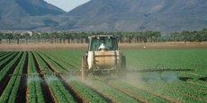 En Côte d'Ivoire, le chiffre d'affaires de la fraude sur les pesticides est estimé à quelque 12 milliards de Fcfa par an.