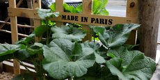 L'objectif de Smart Food Paris n'est rien de moins que faire de Paris la capitale mondiale de l'innovation alimentaire.
