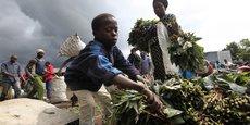 Un jeune garçon vend des feuilles de manioc sur un marché de Bunagana, dans l'est du Congo, près de la frontière ougandaise (octobre 2012).