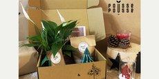L'une des box de jardinage imaginées par Pousse Pousee