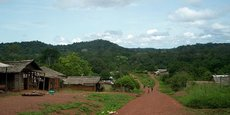 «Paysage forestier Nord Congo», un des projets financés par l'AFD, vise à assurer le maintien du continuum écologique et la préservation de la biodiversité dans la partie nord du Congo.