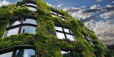 Demain, la végétation recouvrira-t-elle tous les murs de la ville ?