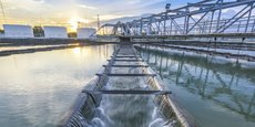 Les producteurs situés en amont des captages d'eau potable, et qui s'engagent à agir pour la préserver, seront les seuls à pouvoir fournir les restaurations collectives.