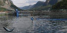 Vue du centre de recherche d'aquaculture de Cargill à Dirdal (Norvège). L'aquaculture satisfait l'augmentation de la demande en poisson depuis le début des années 1990 et va bientôt dépasser la pêche traditionnelle en quantité. Les espèces marines menacées de surpêche comme le thon rouge sont celles qui n'ont pas encore été domestiquées.