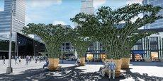 Visuel 3D des canopées urbaines qu'Urban Canopee va installer à Toulouse.