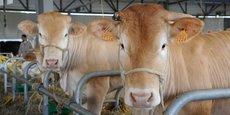 La filière élevage de Nouvelle-Aquitaine sera réunie dans le hall 1 au coeur d'un espace de 270 m2.
