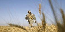 Photo d'illustration : soldat américain patrouillant dans un champ de blé au sud de Kandahar (Afghanistan), en juin 2010.