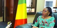 Selon les détails donnés par la ministre Olga Ghislaine Ingrid Eboukas-Babakas, « 31,53 % du montant sera consacré aux activités relatives au renforcement de la bonne gouvernance, 40,29 % à la valorisation du capital humain et 28,16 % à la diversification de l'économie nationale ».