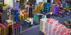 Le marché d'intérêt national de Bordeaux Brienne voit passer 150.000 tonnes de produits frais par an.