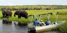 Le Zimbabwe est le deuxième pays africain en termes de population d'éléphants derrière le Botswana, devant la Namibie, la Zambie et l'Angola.