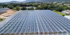 Les serres photovoltaïques de REDEN Solar.