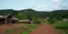 Au Congo, les forêts sont la deuxième ressource naturelle derrière le pétrole.