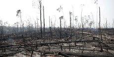 AMAZONIE: BOLSONARO ENVOIE L'ARMÉE POUR LUTTER CONTRE LES INCENDIES