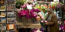 Le marché aux fleurs d'Amsterdam est l'une des attractions touristiques les plus célèbres de la ville d'Amsterdam.