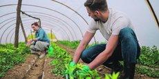Depuis cinq ans, 44 projets pour une agriculture écologiquement performante ont été subventionnés par la Région pour un montant de 3,4 millions d'euros.