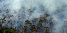 Greenpeace dénonce la réduction de moyens destinés à la lutte contre la déforestation.
