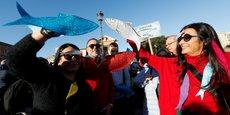ITALIE: DES MILLIERS DE SARDINES DÉFILENT CONTRE SALVINI