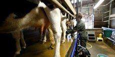 Le principal problème posé par la forte compétitivité du lait français est qu'elle met en lumière une distorsion de marché. La rentabilité de la filière s'appuie notamment sur la faiblesse des prix payés aux agriculteurs par les trois plus grands acteurs, ce qui remet sérieusement en question la durabilité du modèle.